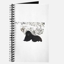Alaska Ursa Journal