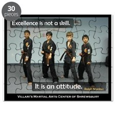 VShrews Excellence Puzzle