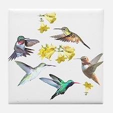 HUMMINGBIRDS AND TRUMPET PLANT Tile Coaster