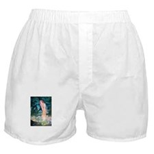 Queen of the Fairies Boxer Shorts