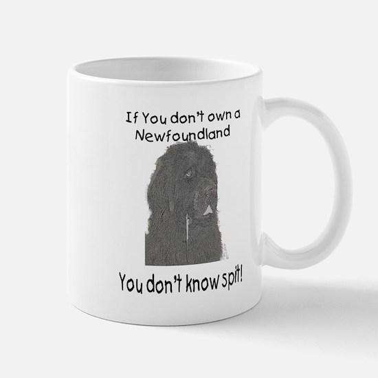 Newfoundland You Dont Know Spit Mug