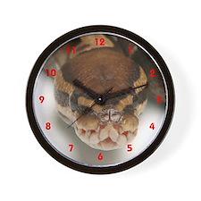 Ball Python Wall Clock