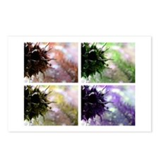 Pointy Postcards (Package of 8)