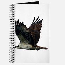 Osprey Journal