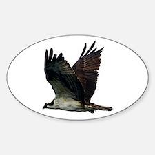 Osprey Decal