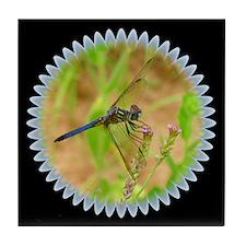 Blue Dragonfly Black Tile Coaster