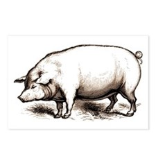 Victorian Pig Postcards (Package of 8)
