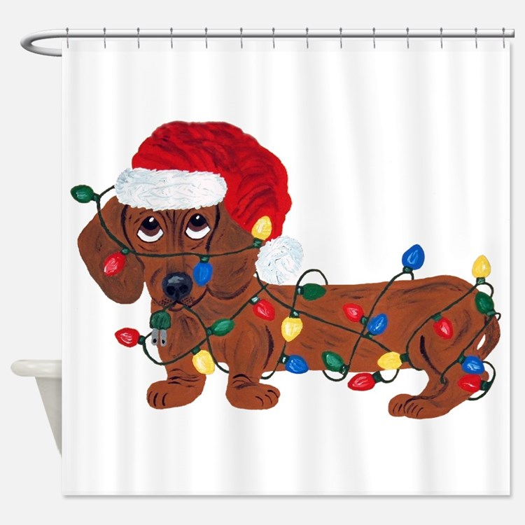 Dachshund (red) Tangled In Shower Curtain