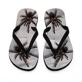 Spider flip Flip Flops