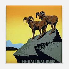 National Parks: Preserve Wild Life Tile Coaster
