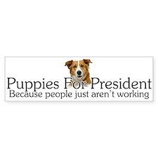 Puppies For President Bumper Bumper Sticker