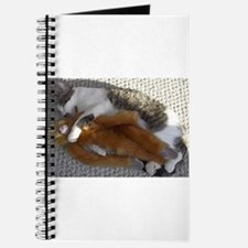 Cats Play Journal