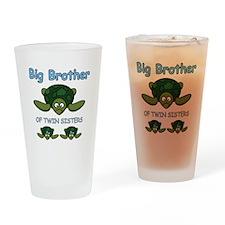 Big Bro Twin Turtle Drinking Glass