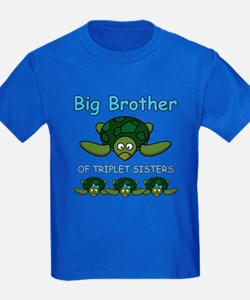 Big Bro Triplet Turtle T