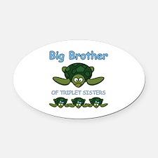 Big Bro Triplet Turtle Oval Car Magnet