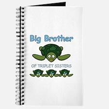 Big Bro Triplet Turtle Journal