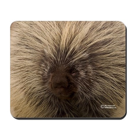 """Bad Hair Day"" Wildlife Mousepads"