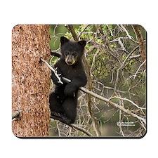 """""""Hang'n"""" Wildlife Mousepads"""