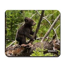 """Cub"" Wildlife Mousepads"