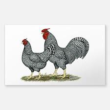 Dominique Chickens Sticker (Rectangle)