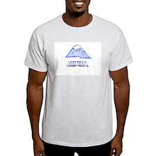 SKIED THE K-12 Ash Grey T-Shirt