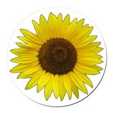 Common sunflower Round Car Magnets