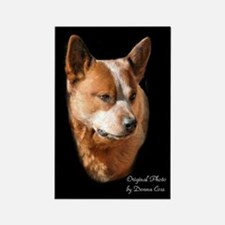 Red Cattle Dog Magnet