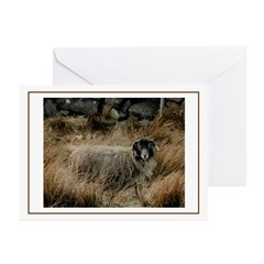 Ram Greeting Cards (Pk of 10)