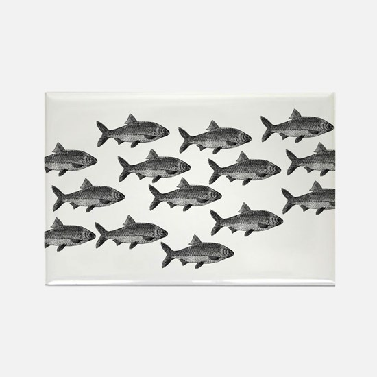School of Fish Rectangle Magnet