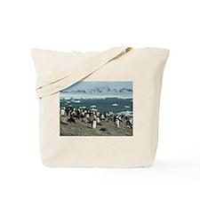 Brown Bluff Tote Bag