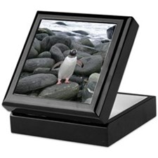 Gentoo Penguin Keepsake Box