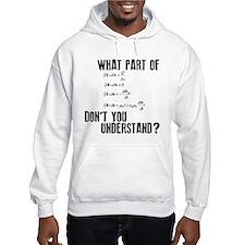 Maxwells Equation Hoodie