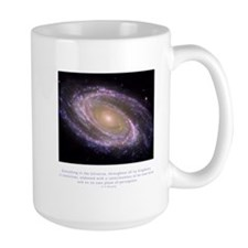 Everything is Conscious Quote Mug