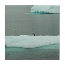 Iceberg 2 Tile Coaster