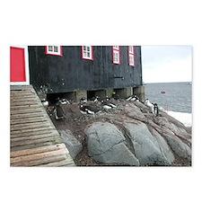 Port Lockroy Postcards (Package of 8)