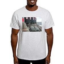 Port Lockroy Ash Grey T-Shirt