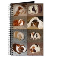 Guinea Pigs Journal