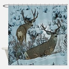 bucks in snow 3 Shower Curtain