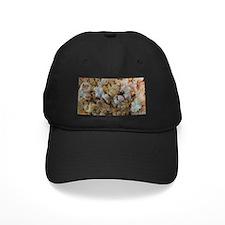 Popcorn Photograph Baseball Hat