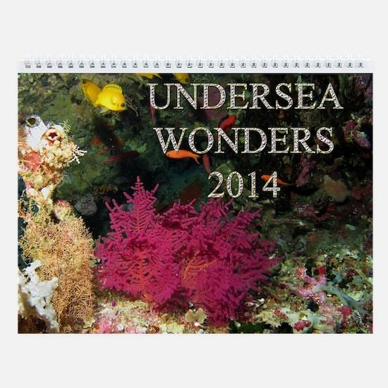 Undersea Wonders 2014