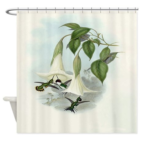Datura And Hummingbird Print Shower Curtain