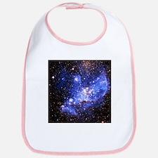 Magellanic Clouds (High Res) Bib