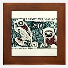 1961 Madagascar Lemur White Sifaka Stamp Framed Ti