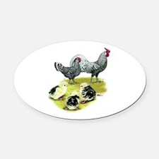 Hamburg Fowl Family Oval Car Magnet
