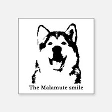 """The Malamute Smile Square Sticker 3"""" x 3"""""""