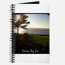 Front lawn at Esalen, Big Sur Journal