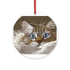 Latte Pounce Keepsake Ornament (Round)