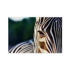 Zebra Eye Rectangle Magnet