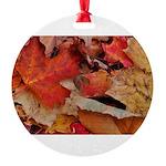 DSC_0732.JPG Round Ornament