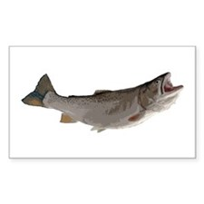 Trout Decal